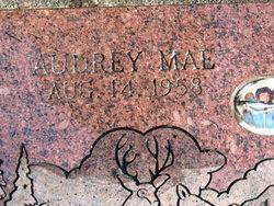Audrey Mae <i>Goodson</i> Blevins