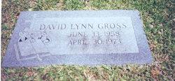 David Lynn Gross