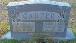 Lottie Emily <i>Cox</i> Carter