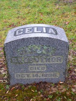 Celia R. Grosvenor