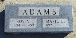 Roy V Adams