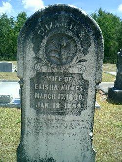 Elizabeth S. Betsy <i>Gay</i> Wilkes