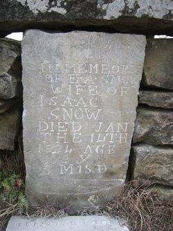 Elizabeth Ann <i>Cummings</i> Snow