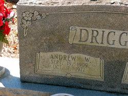 Andrew W. Driggers
