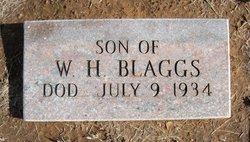 Son of W.H. Blaggs