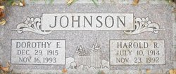 Dorothy E Johnson