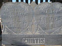 Agnes <i>Fullmer</i> Curtis