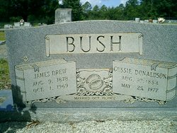 James Drew Bush