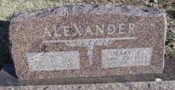 Joe L Alexander