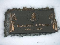 Raymond J. Harry Knoll