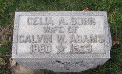Celia <i>Born</i> Adams