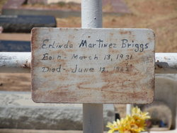 Erlinda <i>Martinez</i> Briggs