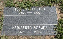 Heriberto Aceves