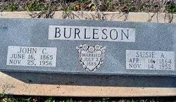Susie Alice <i>Williamson</i> Burleson