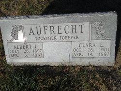 Albert J Aufrecht