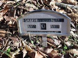 Sharon Noah