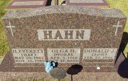 Olga <i>Dvorak</i> Hahn