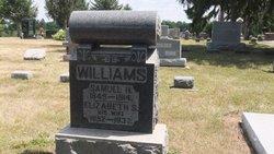 Sarah Elizabeth <i>Reichard</i> Williams