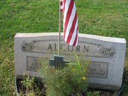 Andrew Alcorn