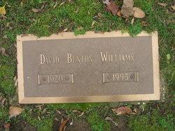 David Benton Williams