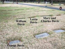 Lottie Virginia <i>McClaran</i> Davis