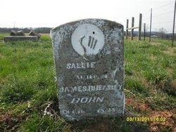 Sarah A. Sallie <i>Burns</i> Beasley
