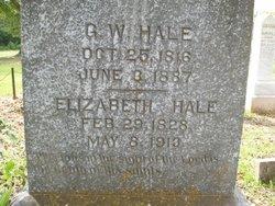 George Washington Hale