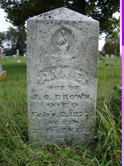 Ann Eliza <i>Sinks</i> Brown