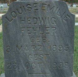 Louise Emilie Hedwig Fehler