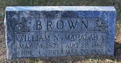 William Nathan Brown