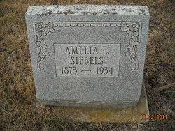 Amelia <i>Fehlhaber</i> Siebels