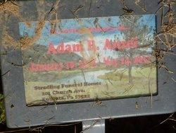 Adam B. Ansel