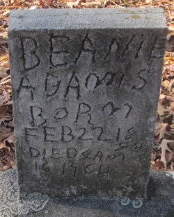 Beanie Adams
