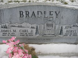Carl J Bradley