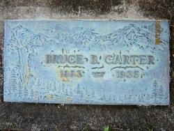 Bruce B Carter