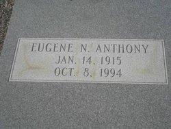 Eugene N Anthony