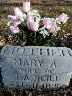 Mary Ann <i>Butler</i> Neill