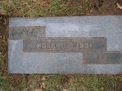 Cella Picht <i>Johnson</i> Reed