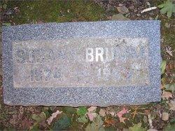 Susan I Brumm