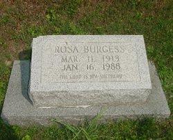 Rosa Burgess