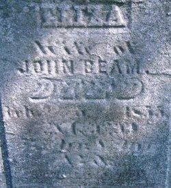 Elizabeth Eliza <i>Cross</i> Beam