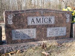 Charlotte I <i>Medlock</i> Amick