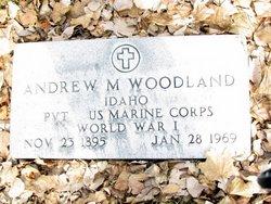 Andrew Morrison Woodland