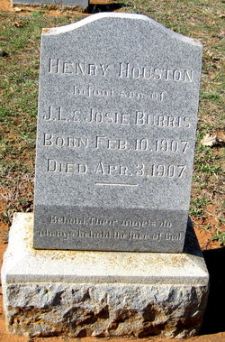 Henry Housotn Burris