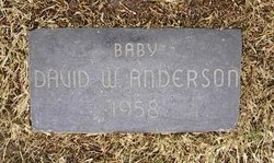 David William Anderson