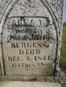 Anna T Burgess