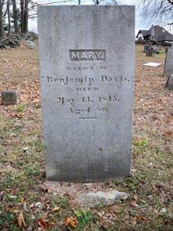 Mary Molly <i>Walbridge</i> Davis