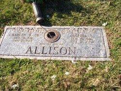 Delphia Irene <i>Stepp</i> Allison