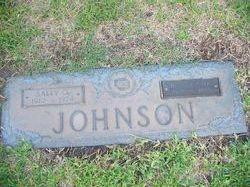 Sally Opal <i>King</i> Johnson