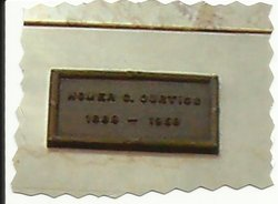 Homer Cyrus Curtiss